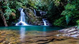 Bach Ma National Park, Vietnam (Image uploaded to Reddit by u/upchuck_huck).