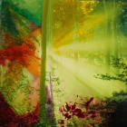Simone Gilges, Enlightenment, 2015-2017, analogue color print, varnish, mixed media, 33 1/10 x  33 1/10 inches