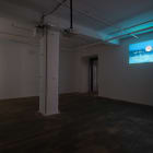 Michael Bell-Smith, 2012, installation view, Foxy Production, New York
