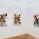 Andrei Koschmieder, 2011, installation view, Foxy Production, New York