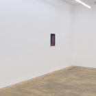 Sascha Braunig, 2011, installation view, Foxy Production, New York