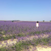 A student studying abroad with American University Center of Provence (AUCP): Aix-en-Provence - Summer in Provence