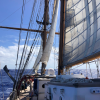 A student studying abroad with SEA Semester: Programs at Sea - Ocean Exploration