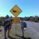 Frontiers Abroad: New Zealand Earth Systems Photo