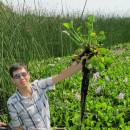 Study Abroad Reviews for University of California, Davis: Lake Atitlan - Ecological and Social Issues at Lake Atitlan, Guatemala