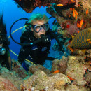 Study Abroad Reviews for Broadreach: Program at Sea - Caribbean Marine Biology 12-Day Adventure
