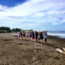 Study Abroad Reviews for The Experiment: Costa Rica - Biodiversity, Ecology, and Sustainability