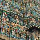 South India Term Abroad - SITA Photo