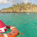Study Abroad Reviews for SEA Semester: Caribbean Reef Expedition