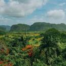 Study Abroad Reviews for KIIS: Cuba