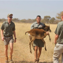 Study Abroad Reviews for Game Ways: Limpopo - Game Ranch Management Academy in South Africa