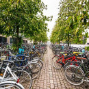 Study Abroad Reviews for CIEE: Copenhagen - Open Campus Block