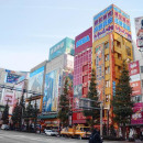 Study Abroad Reviews for EF International Language Campuses: Study Japanese in Tokyo