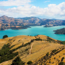 Study Abroad Reviews for Pacific Discovery: New Zealand & Fiji Summer Program | 6 week