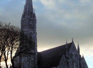 Study Abroad Reviews for API (Academic Programs International): Limerick - University of Limerick