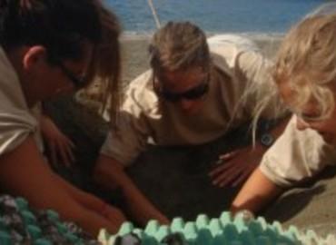 Study Abroad Reviews for GVI: Giannitsochori - Volunteer Programs in Greece