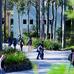 Photo of ISA Study Abroad in Newcastle, Australia
