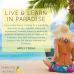Photo of Paradise Interns: Digital Marketing and Scuba Diving Internships in Indonesia