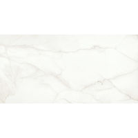 DOLMAGLIN60120FAP - Magnifica Slab - Lincoln Super White