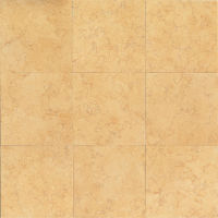 "Ambre 18"" x 18"" x 3/8"" Floor and Wall Tile"