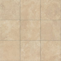 "Rome 12"" x 12"" x 3/8"" Floor and Wall Tile in Imperial"