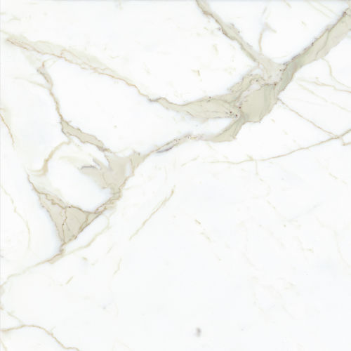 "Magnifica 30"" x 30"" Floor & Wall Tile in Calacatta Super White"