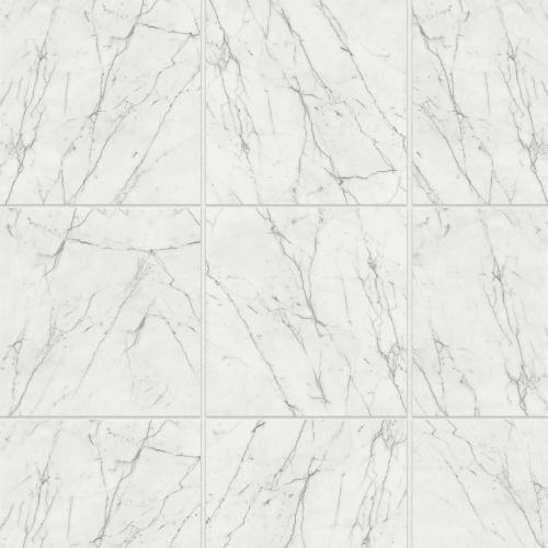 "Statuario 18"" x 18"" Floor & Wall Tile"