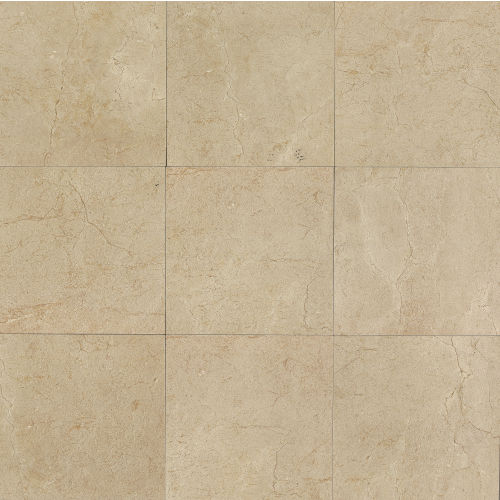 "Marfil 12"" x 12"" Floor & Wall Tile in Crema"