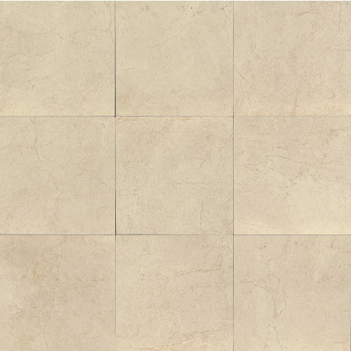 "Marfil 24"" x 24"" Floor & Wall Tile in Bianco"