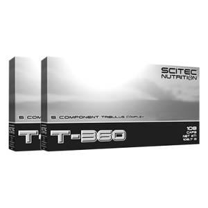 T-360 2er Pack
