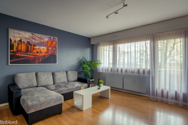 Spacious flat in Schiltigheim