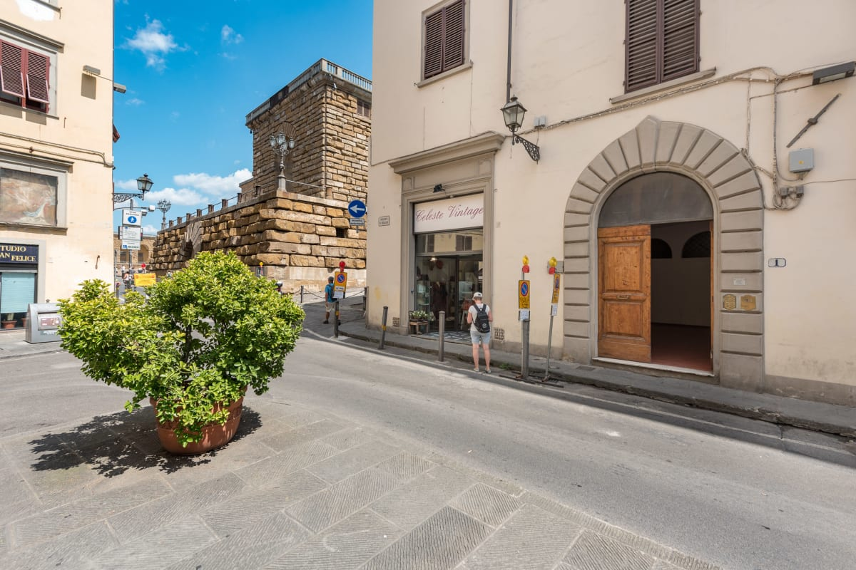 Apartment HEART OF FLORENCE Pitti 2 Bed-Apartment  photo 20442988
