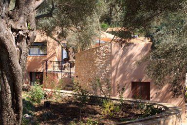 Luxury villa surrounded by beautiful olive trees