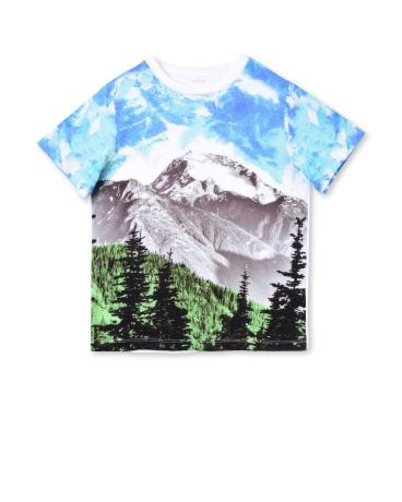 Arrow Mountain Print T-shirt
