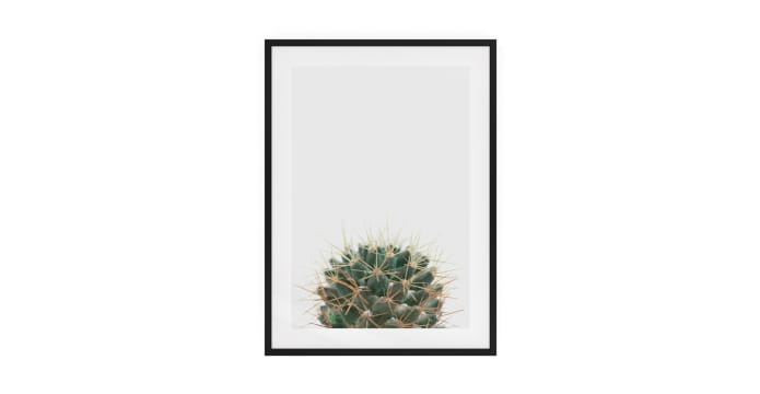 The Prickle Print