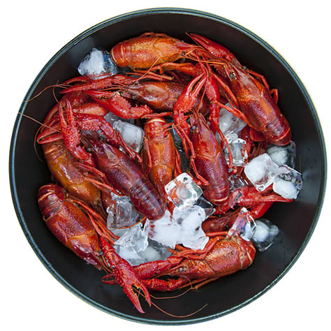 4 lbs. Whole Boiled Crawfish with seasoning