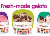 Trampoline Gelato franchise opportunity in Burwood VIC