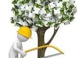 Garden & Household Business in Prospect