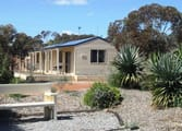 Accommodation & Tourism Business in Wongan Hills