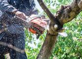 Home & Garden Business in Bundoora