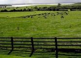 Rural & Farming Business in Shepparton