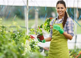 Home & Garden Business in Maroochydore