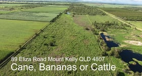 Rural / Farming commercial property for sale at 5 Elisa  Road Mount Kelly QLD 4807