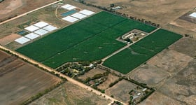 Rural / Farming commercial property for sale at 286 Buckland Park Road Two Wells SA 5501