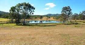Rural / Farming commercial property for sale at 22649 Peak Downs Highway Hazledean QLD 4741