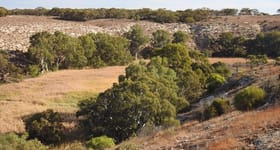 Rural / Farming commercial property for sale at Sunnydale Cliffs Christians Road Sunnydale SA 5353