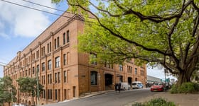 Medical / Consulting commercial property for lease at 45 Jones Street Ultimo NSW 2007