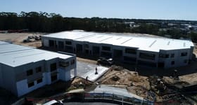 Showrooms / Bulky Goods commercial property for lease at 25/8 Distribution Court Arundel QLD 4214