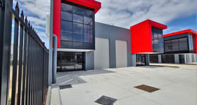 Showrooms / Bulky Goods commercial property for lease at 1/300 Lavarack Avenue Pinkenba QLD 4008