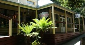 Shop & Retail commercial property for lease at 2/47-53 Olinda Monbulk Road Olinda VIC 3788